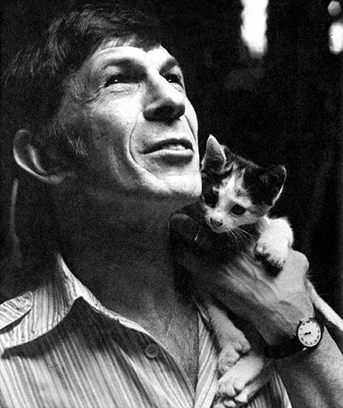 Leonard-Nimoy and cat