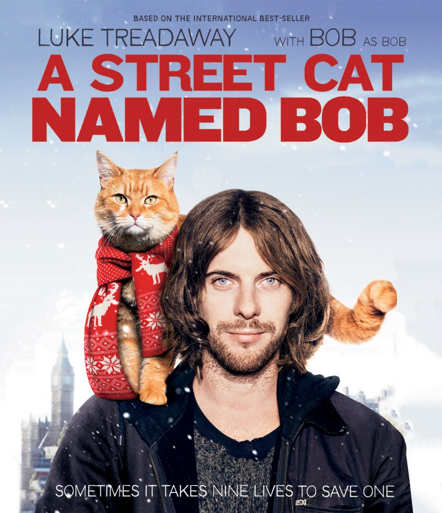 street cat called Bob